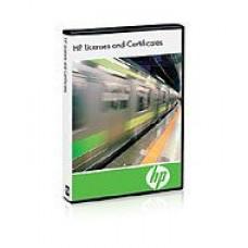 HP VMware ESXi Standalone Lic